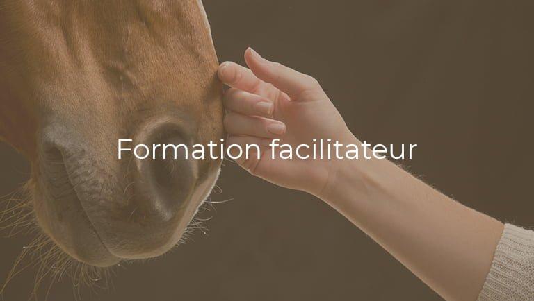 formation-facilitateur