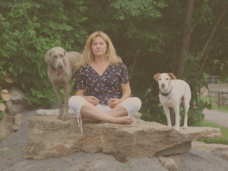 meditation-femme-chiens